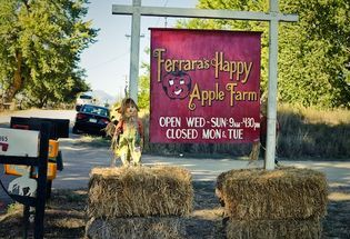 Ten Top Places to Pick Apples and More