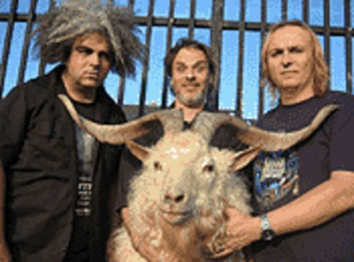 Hook 'em horns: Buzz Osborne (from left), Kevin  Rutamanis and Dale Crover are the Melvins. The goat  is their muse.