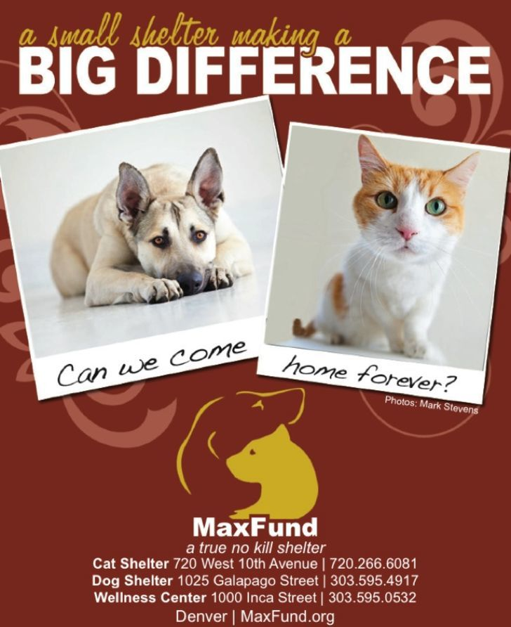 Maxfund Animal Adoption