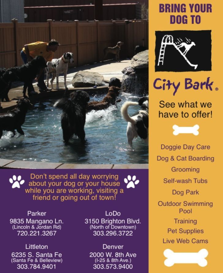 CityBark Management Services Inc.