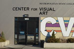 Center for Visual Art/MSU