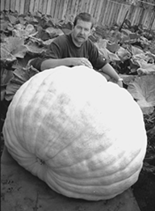 Joe Scherber and his pumpkin.