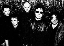 More than twenty years after forming in Liverpool, Echo and the Bunnymen are still hopping along.
