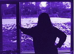 Seen of the crime: Laura Mehmert looks out her window at the former Wuthrich yard.