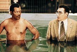 Coming clean: Samuel L. Jackson and Eugene Levy  in The Man.
