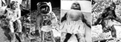 Click to enlarge  Ball of shame: Fred Finlay and Twitchy, Apollo 11 astronaut, alien baby and Sasquatch -- exposed!