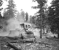 A bulldozer digs a fire line the effective way.