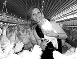 The egg and I: Cyd Szymanski ruffles a few feathers with Colorado Natural Eggs.