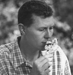 He stops to smell the flowers: Robbie Fulks has caught a whiff of alt-country success.