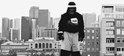Go ape at the Denver Gorilla Run, Saturday at Six 