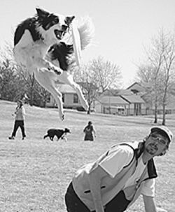 Disc Dogs gives canines flying lessons.