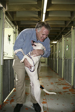 Doug Kelley is head of Denver Animal Care and Control.