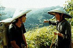 Deliverance: Liu Ye and Teng Lujan in Postmen in 