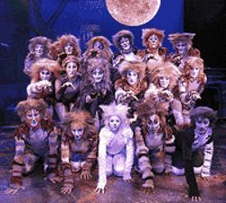 The cast of Cats at Boulder Dinner Theatre.