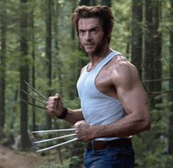 Hugh Jackman is one bad-ass Wolverine in X- Men:  The Last Stand.