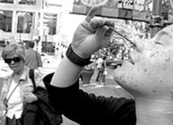 Blockhead: Amy Rickords practices her nail-in-nose  trick during last weekend's Buskerfest.