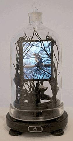 """Lonesome Bird,"" by David Zimmer, glass, wood,  twigs and an LCD monitor with sound."
