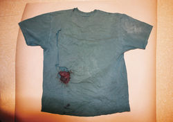 Pinal County authorities declined to send Puroll&amp;#146;s bloody T-shirt to a state crime lab for testing.
