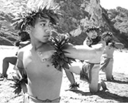 Skirting the issues: American Aloha: Hula Beyond 