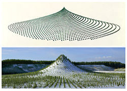"Schematic image and photo of ""Tree Mountain,"" by Agnes Denes, digital prints."
